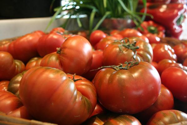 Tomates de la Huerta de Aranjuez